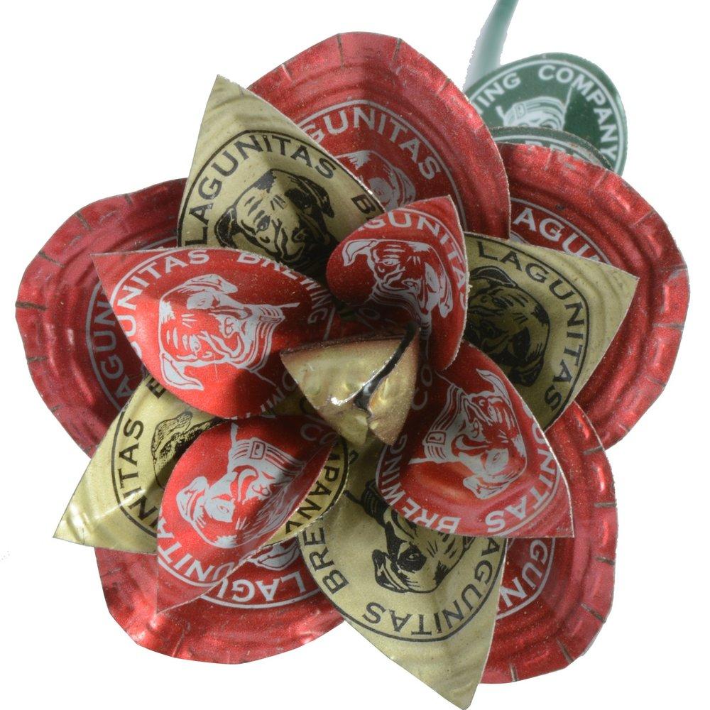 rose - Lagunitas.jpg