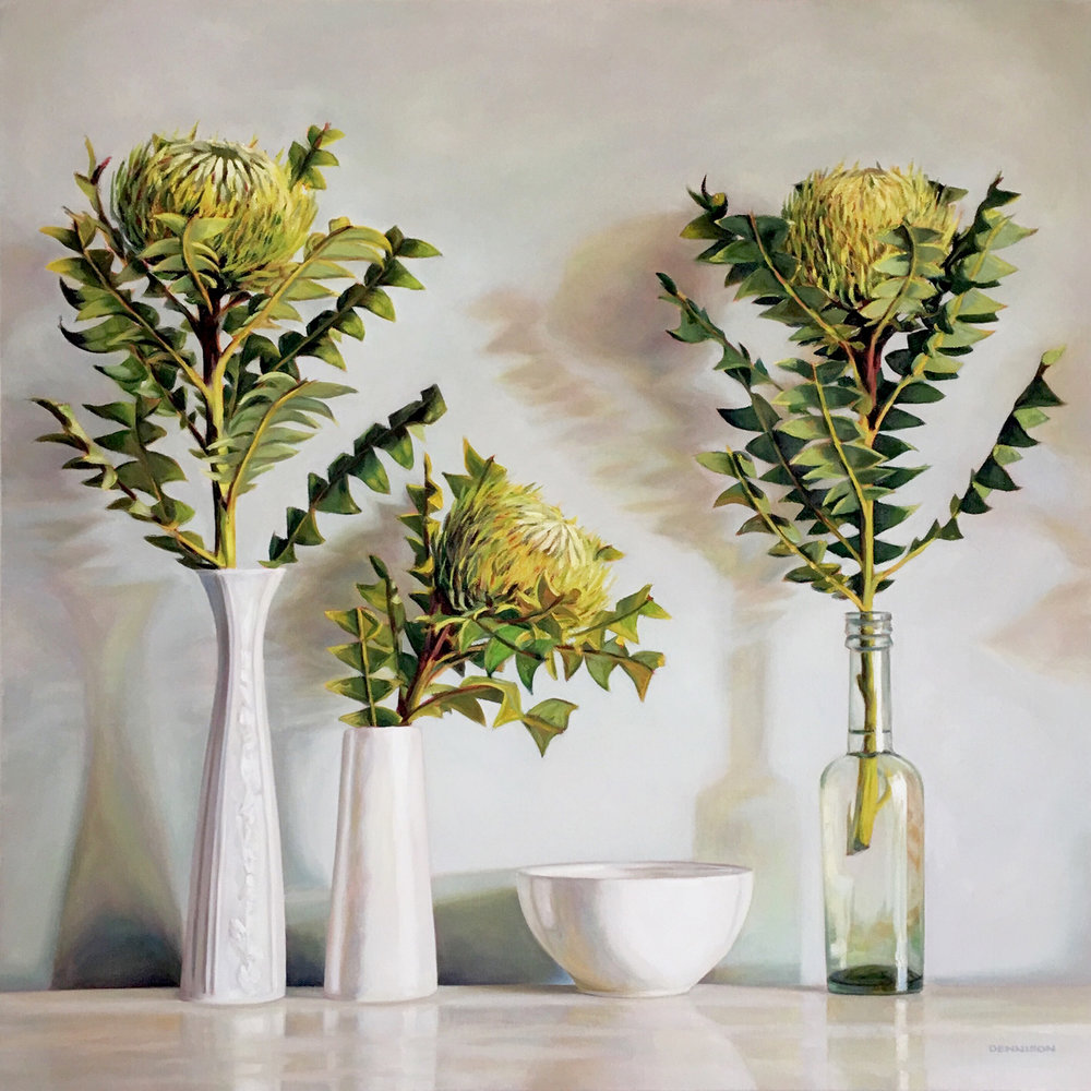 Banksia Baxteri Still Life   Oil on Canvas, 70cm x 70cm