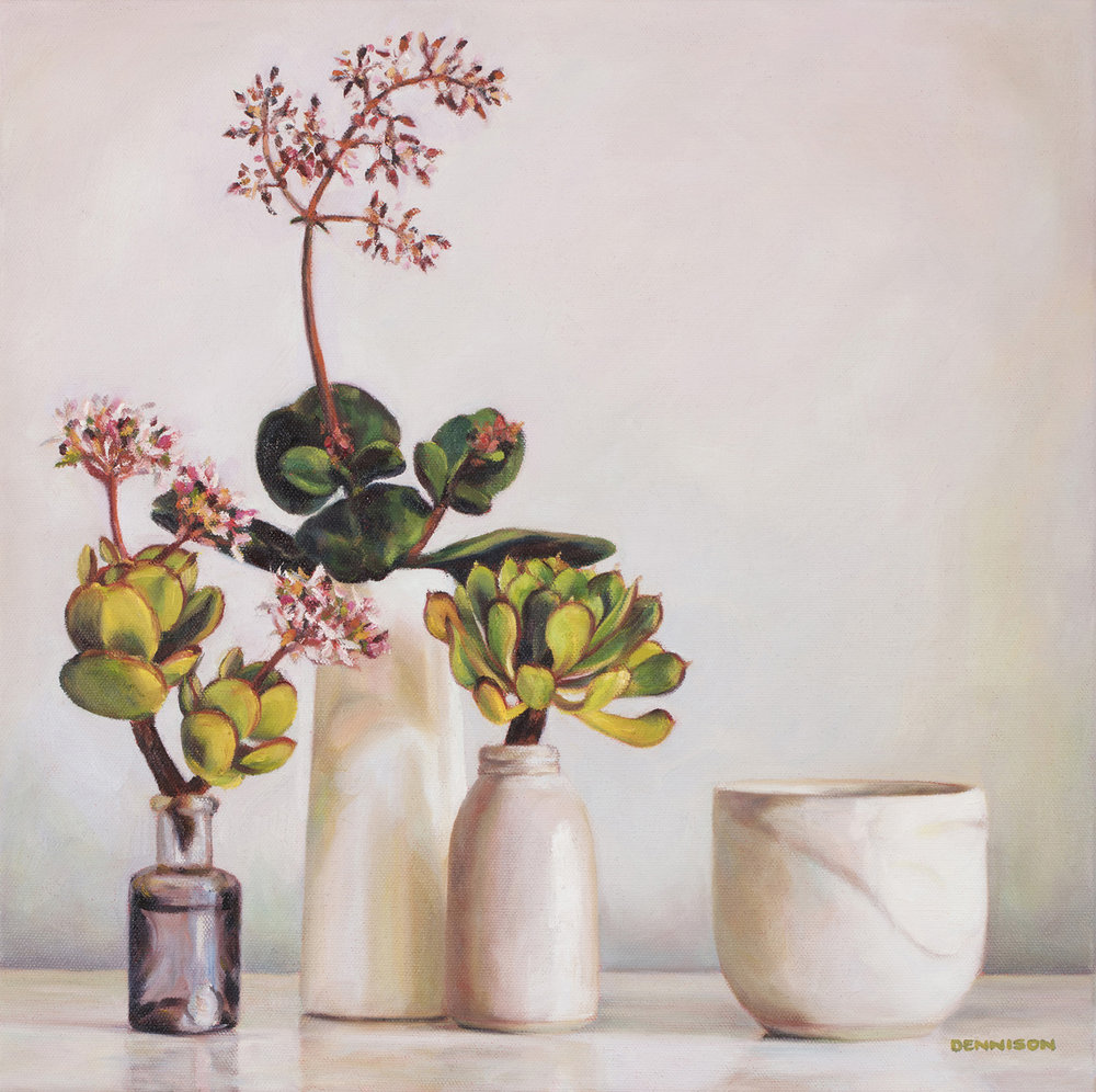Succulents from the Garden   Oil on Canvas, 51cm x 51cm