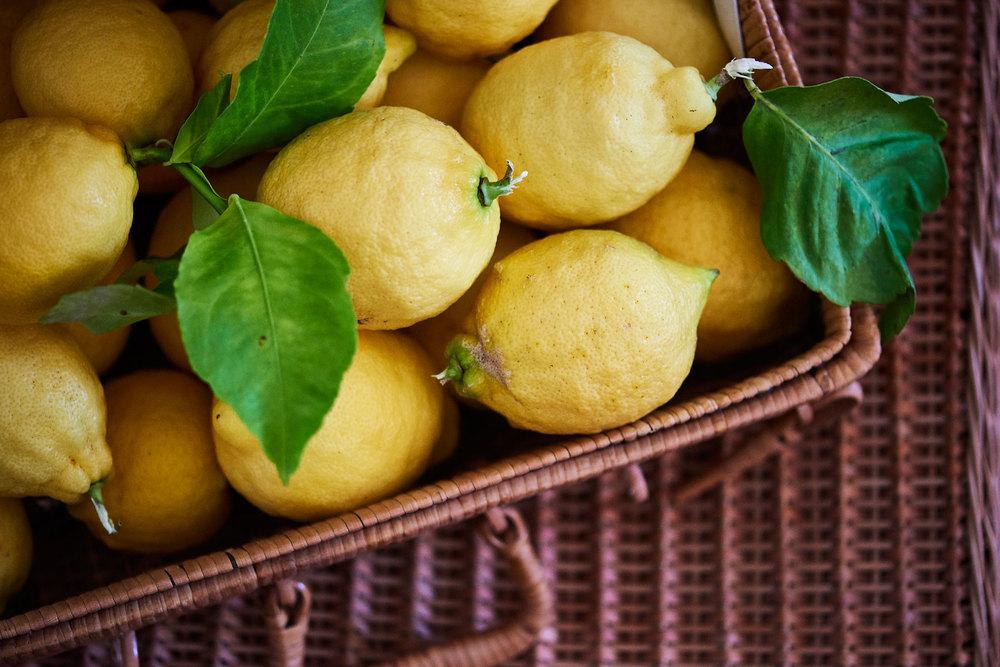 mel-arnott-still-life-lemons.jpg
