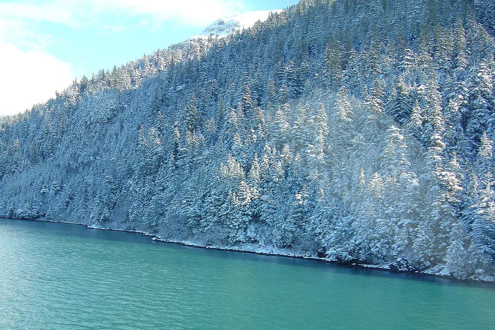Heli Skiing in Cordova (6).jpg