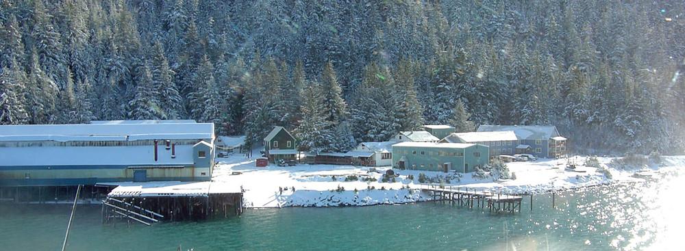 Heli Skiing in Cordova (20).jpg