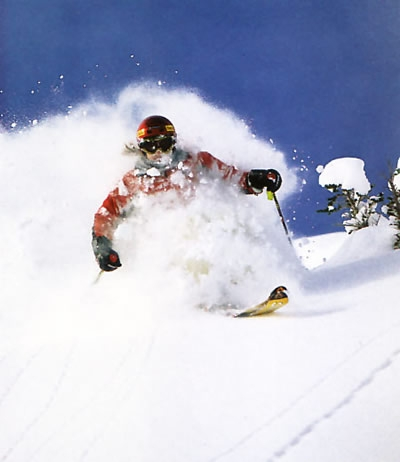 Ulmer in the Powder
