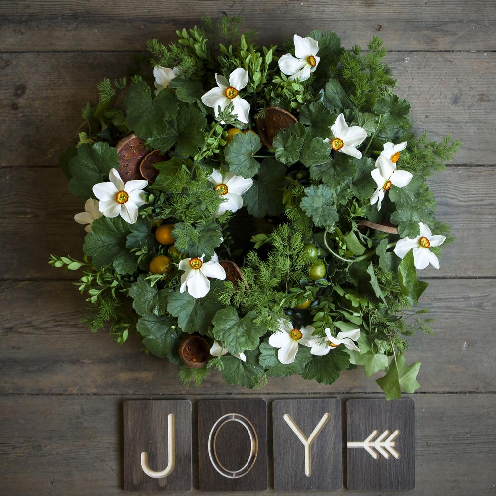 Joy Solution (online) (15 of 77).jpg