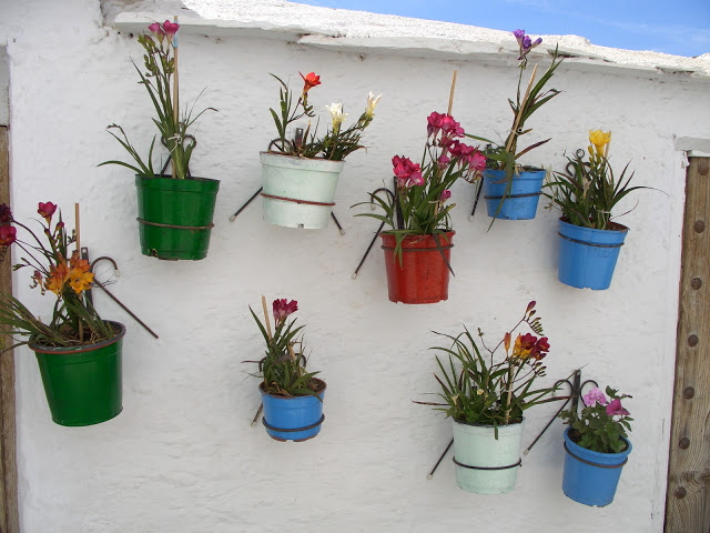 flowers on wall.jpg