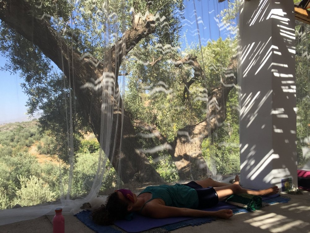 deep savasana next to old olive trees