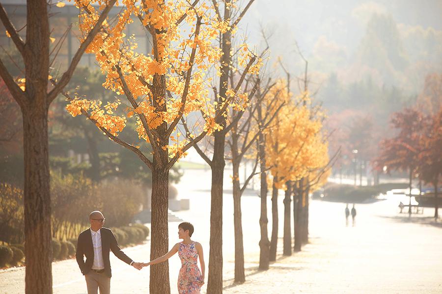 seoul jeju korea . wedding photography by kurt ahs . steve+chloe . 8080.jpg