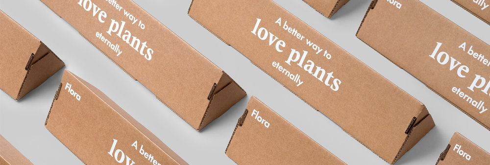 Show your feelings with a gift of   everlasting plants!    Send Flora