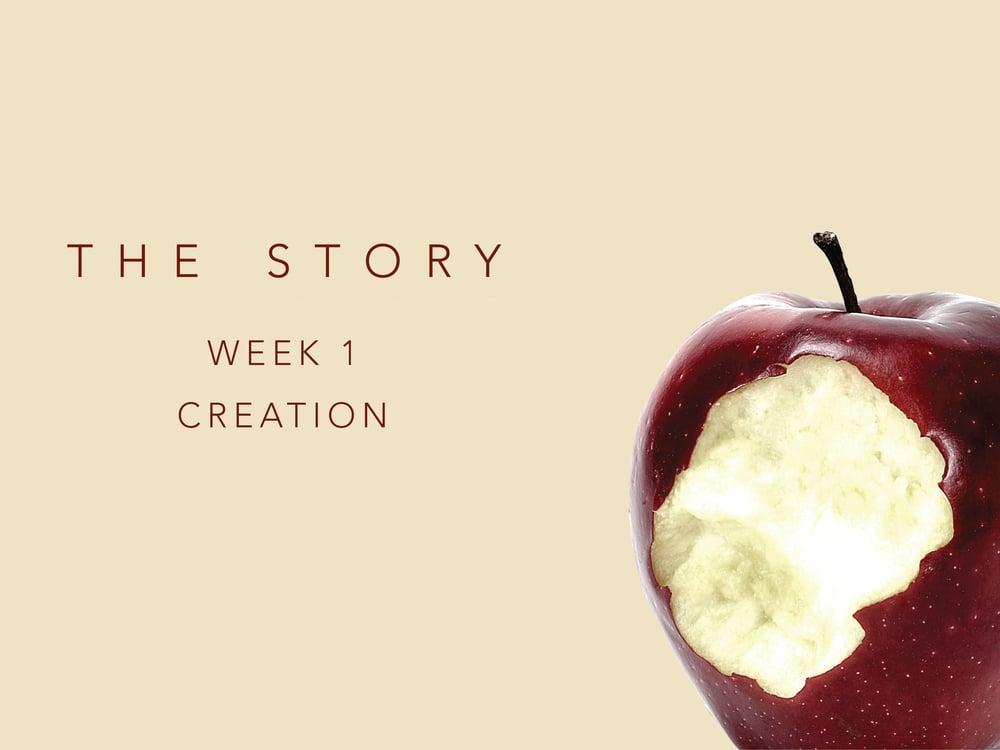TheStory_Week1.jpg