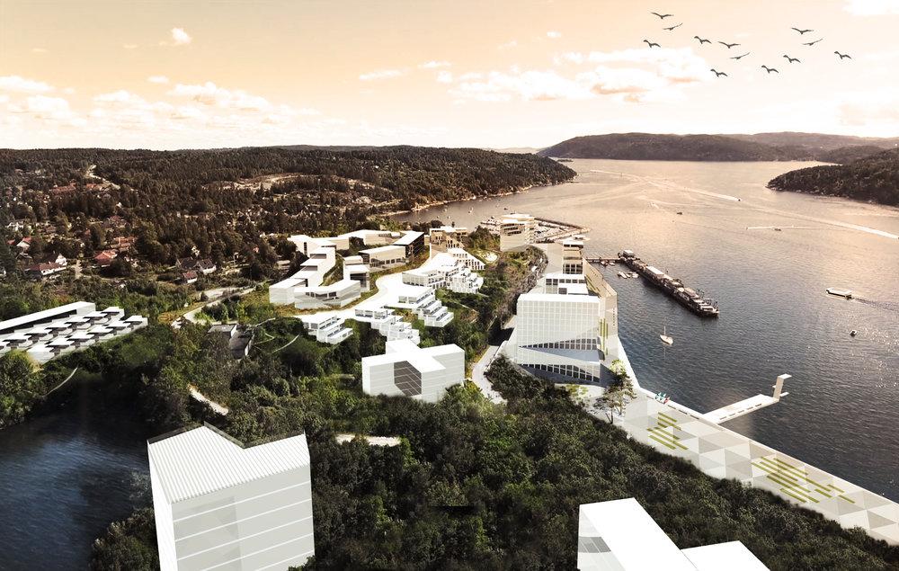171120 Fagerstrand sjøside fra drone.jpg