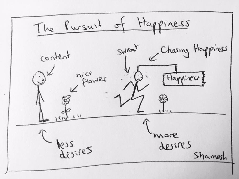 futile pursuit of happiness