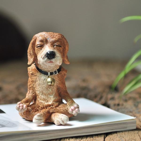 meditating dog.jpg