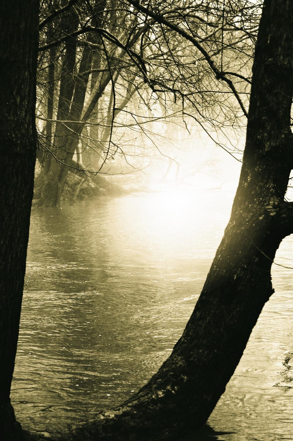 River Dawn, 2016. Susan McClory