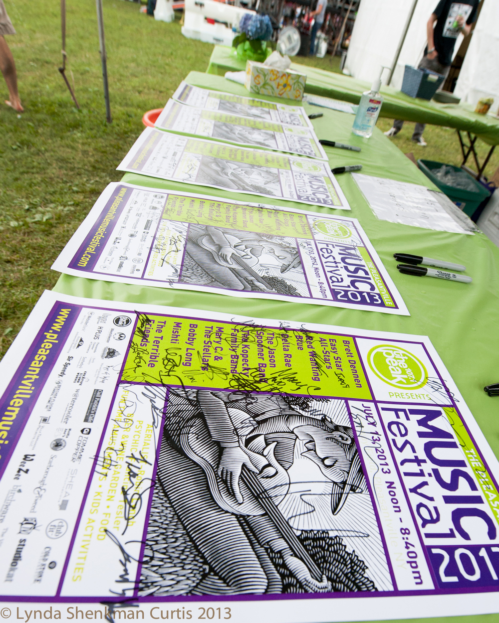 Signed posters © 2013 Lynda Shenkman Curtis