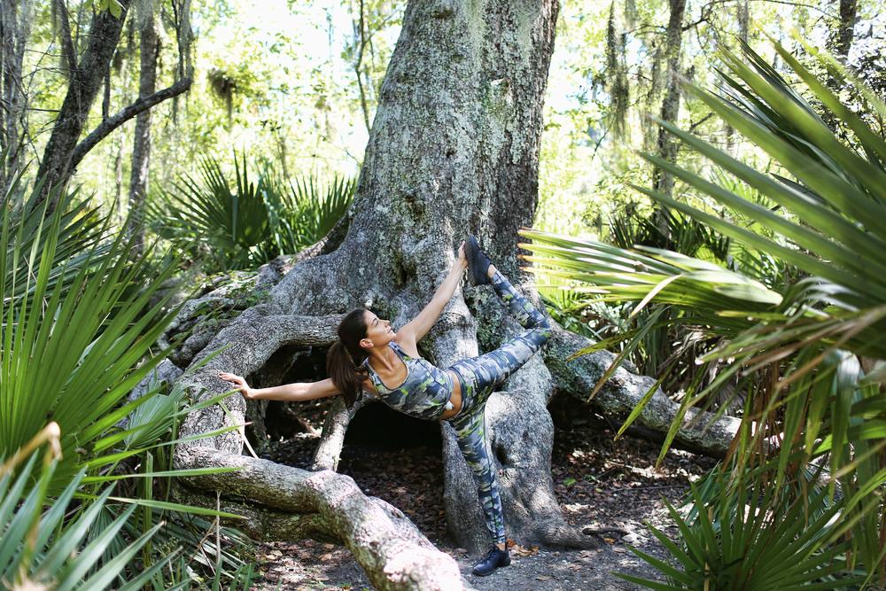tree new.jpg
