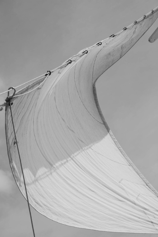sails1 (1 of 1).jpg