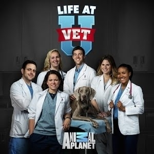 Life at Vet U | Animal Planet