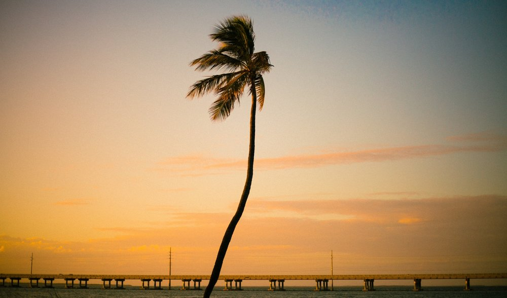 key west photographer, travel blog, explorer, lena perkins, lifestyle photographer, traveler, on the road, conde nast, national geographic, vogue, islamorada, bahia honda, marathon, florida, key west.jpg