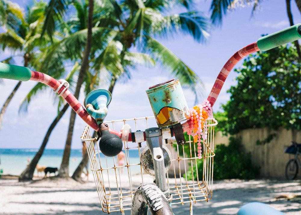 key west dog beach, visit florida, key west photographer, lena perkins, louies restaurant, bicycle, casa marina, cayo hueso, island, tropics.jpg