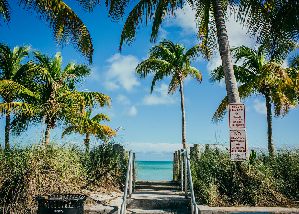 key west smathers, visit florida, key west photographer, lena perkins, white street, bicycle, white street pier, cayo hueso, island, tropics, palm tree, beach, key west wedding.jpg