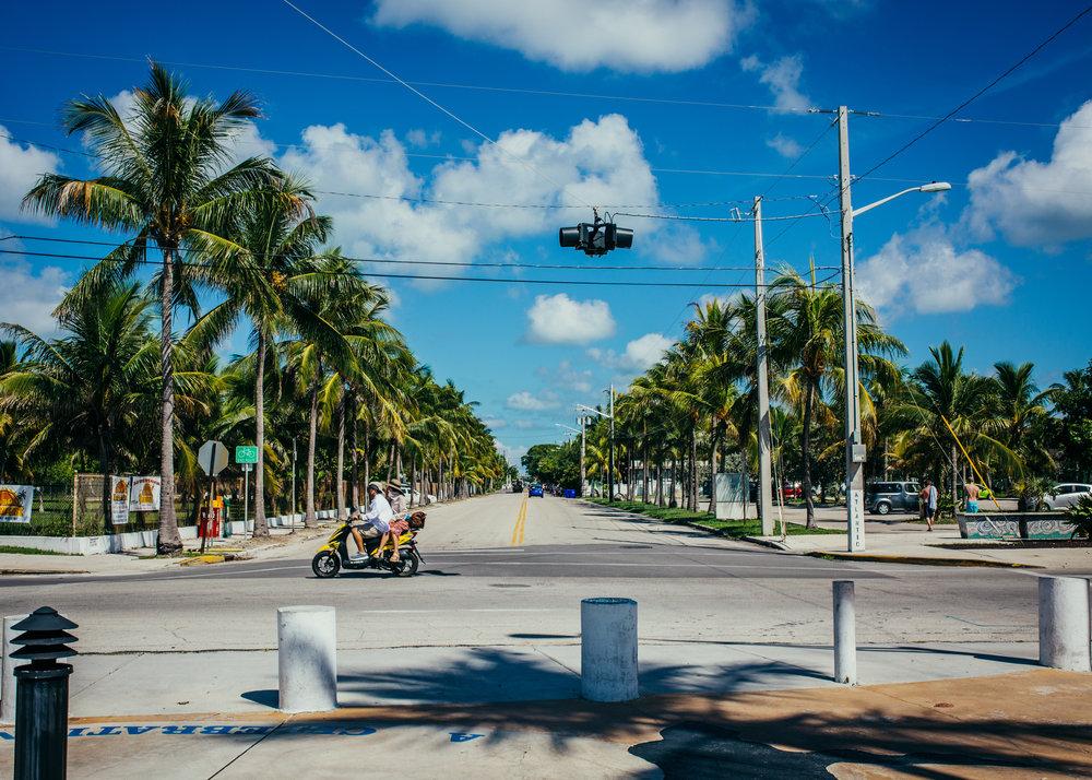 key west higgs beach, visit florida, key west photographer, lena perkins, white street, bicycle, white street pier, cayo hueso, island, palm trees, beach, paradise, tropics
