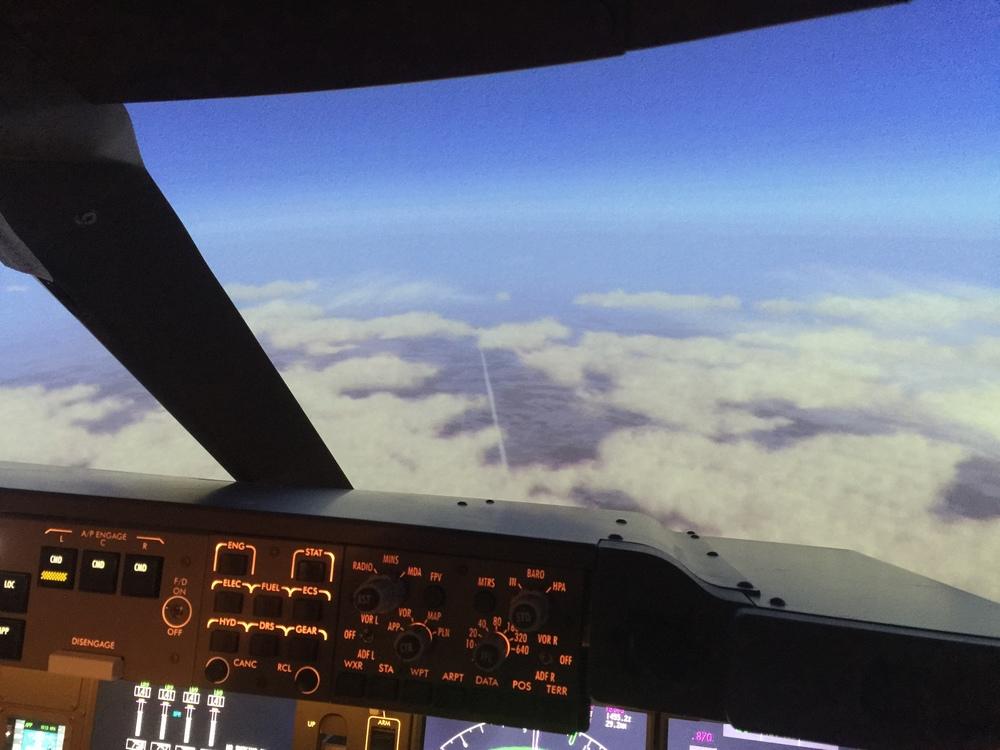 Mangrove 737 Simulator in cruise below us