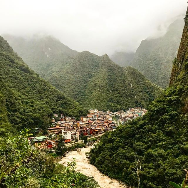 #jungle #travelphotography #ineedashower