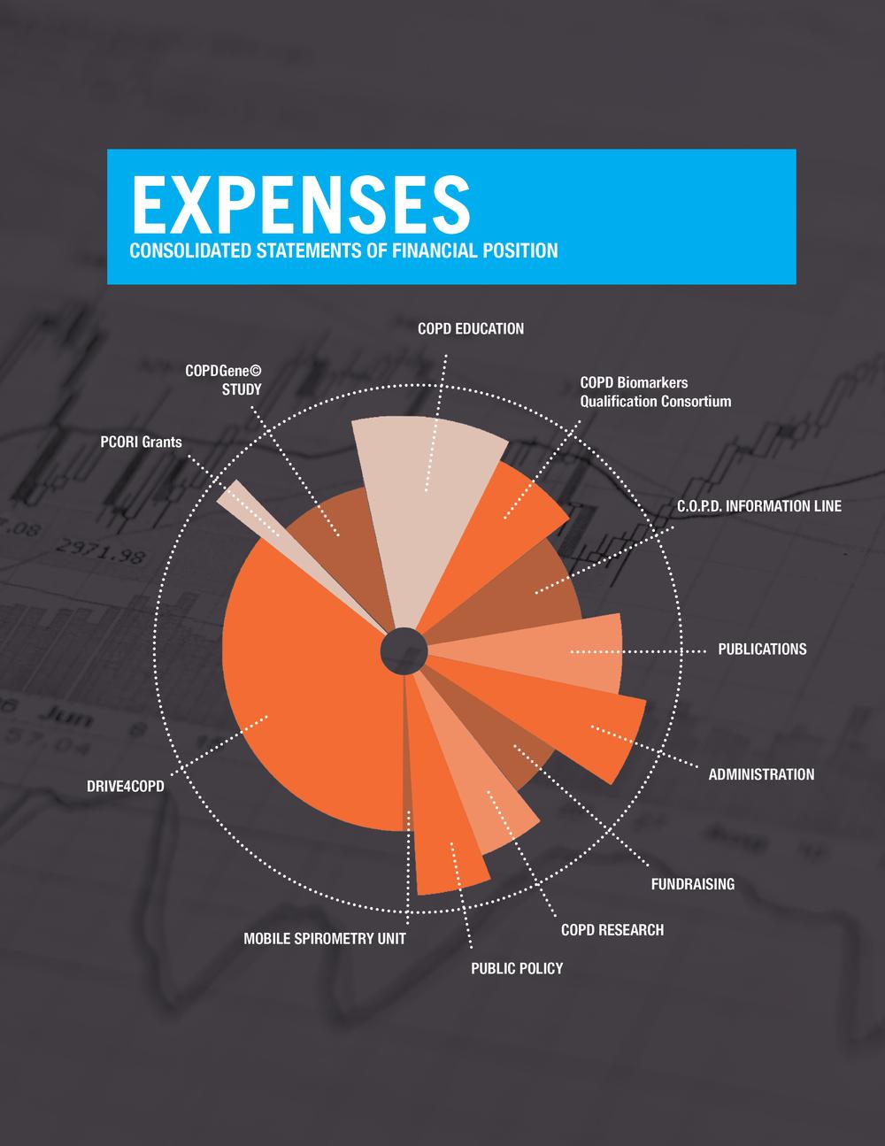 finances graph.png