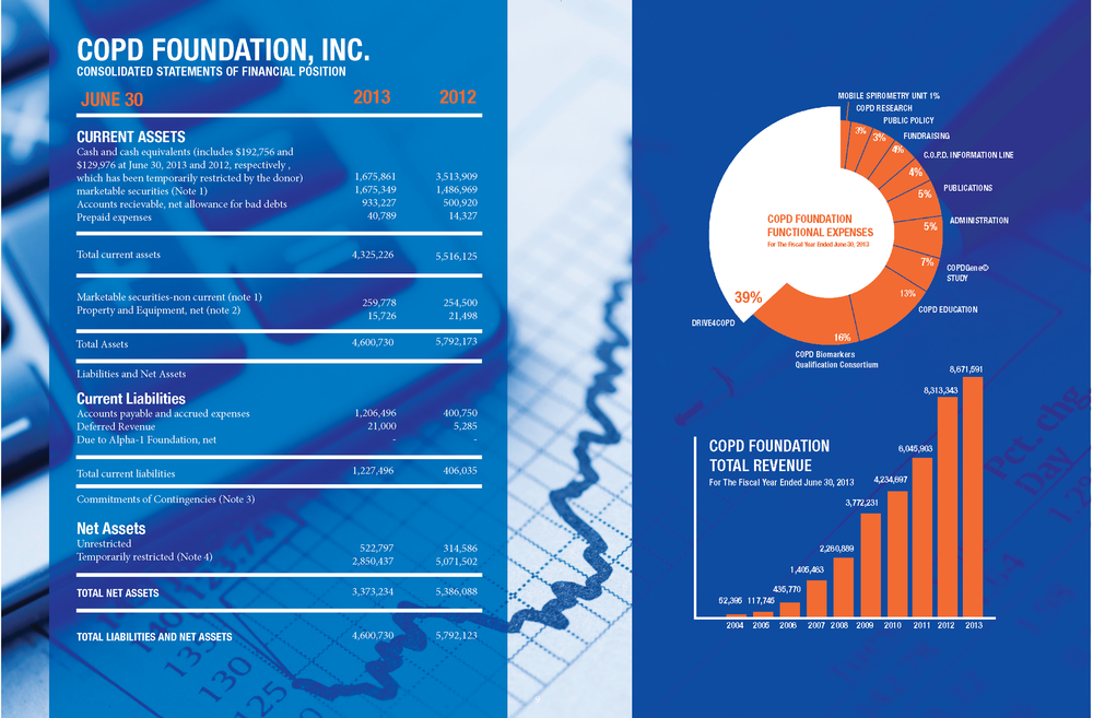 copd foundation financials 2013.png