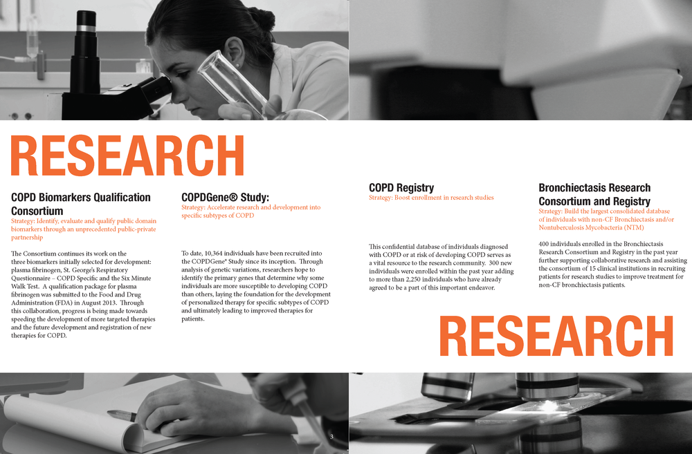 research report 2013 for website.png