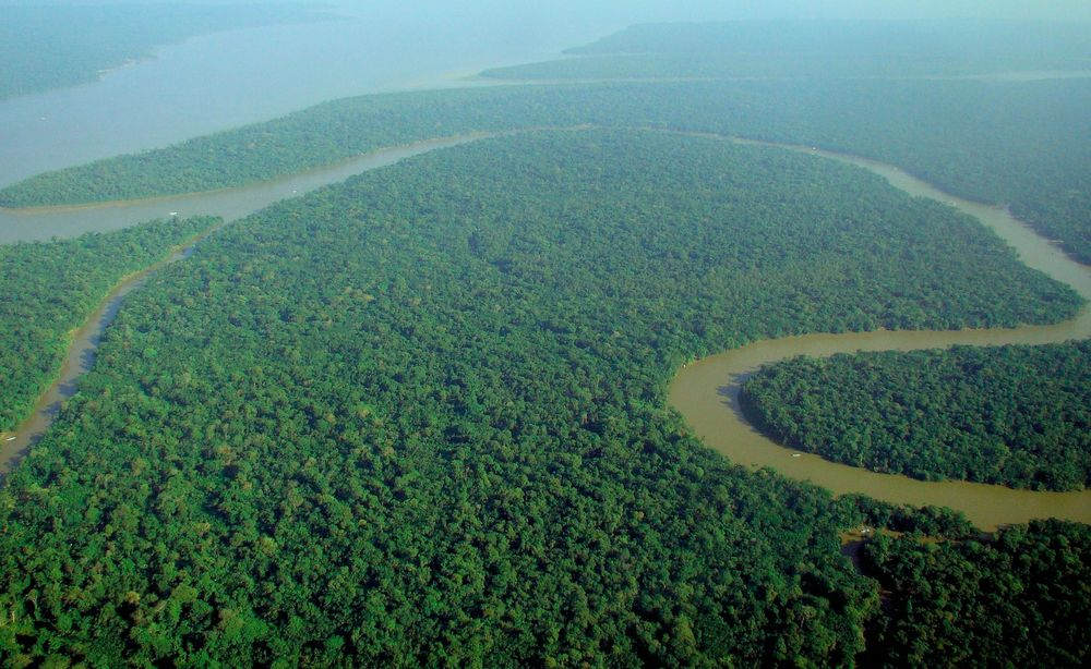 With an average freshwater discharge of approximately 219,000 cubic meters per second, the Amazon river represents 15-16% of the world's total river flow into the world's oceans.