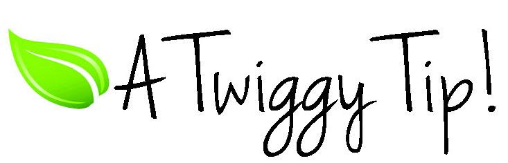 Twiggy tip.jpg