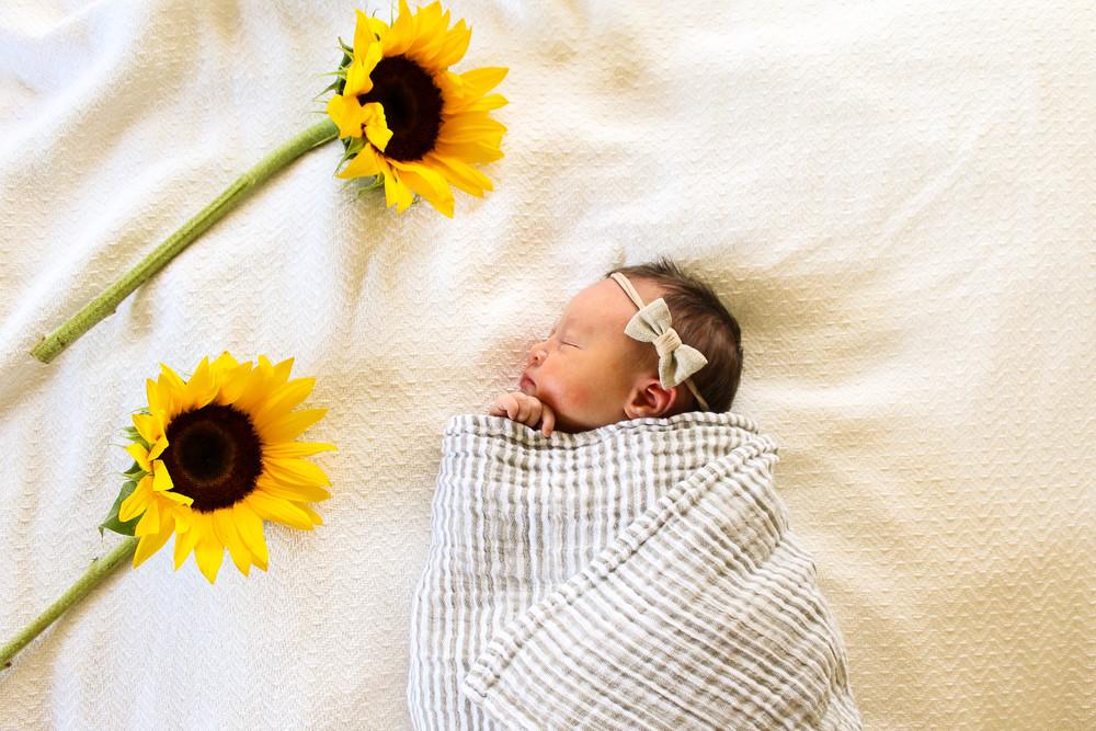 newborn sunflower photo, little unicorn striped swaddle