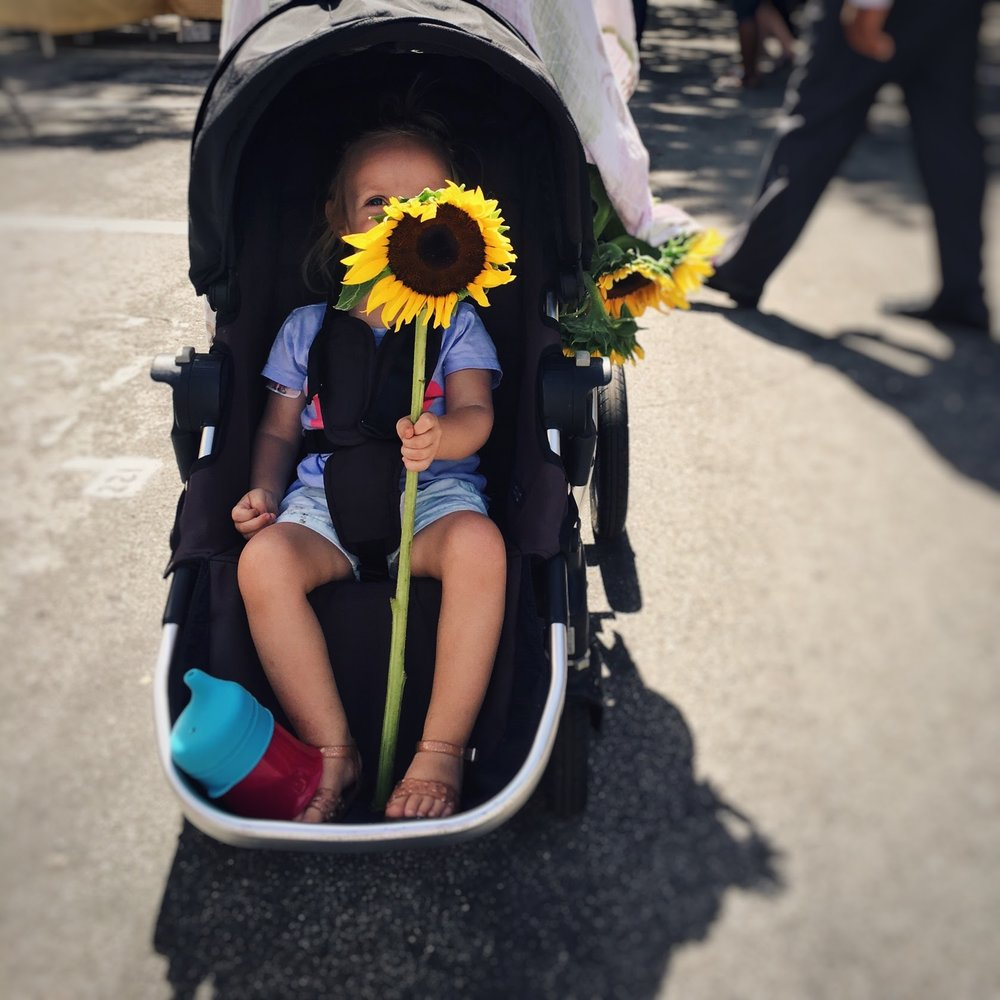 sunflower and toddler, a Saturday photo story | Feathers and Roots