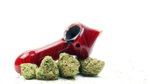 Photo Credit: Marijuana Industry News