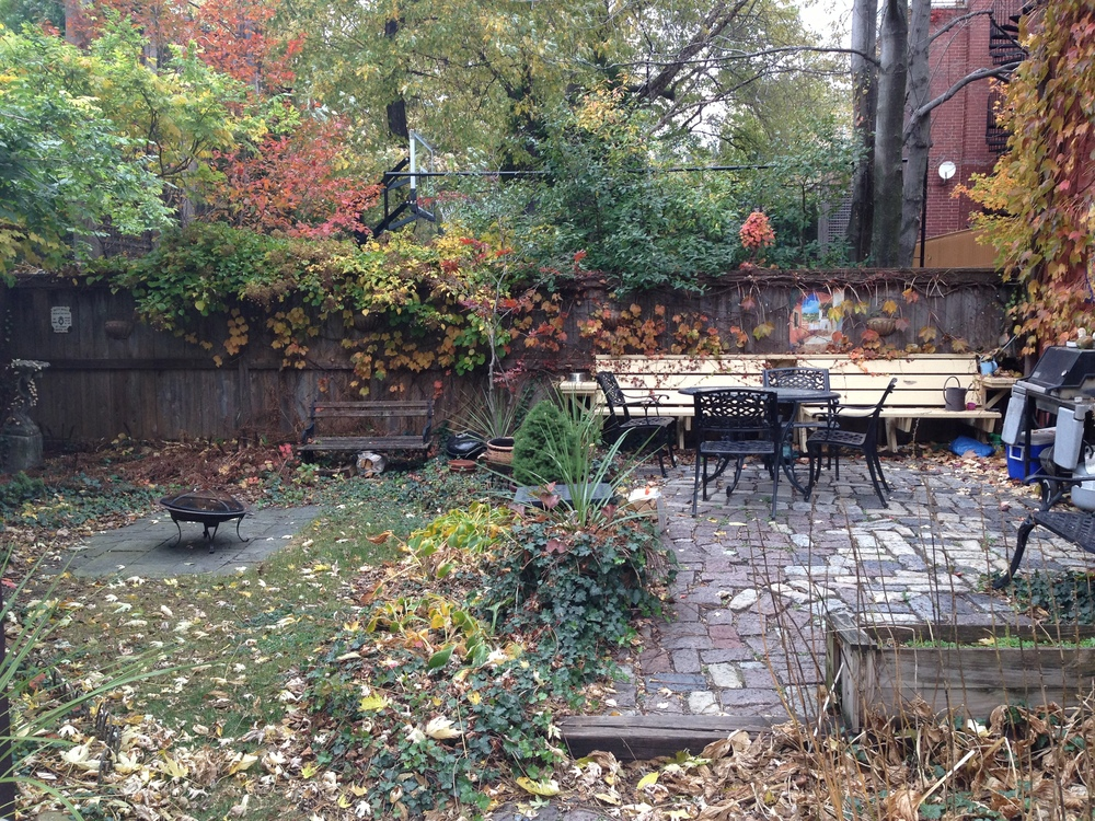 Shared backyard/patio