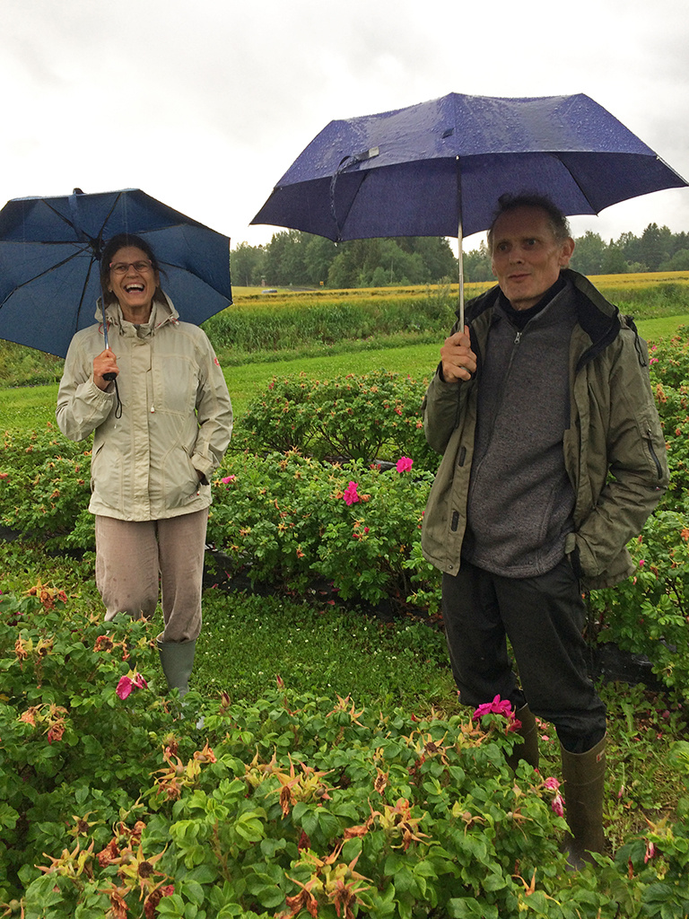 tuuli_matti_rose_farm.jpg