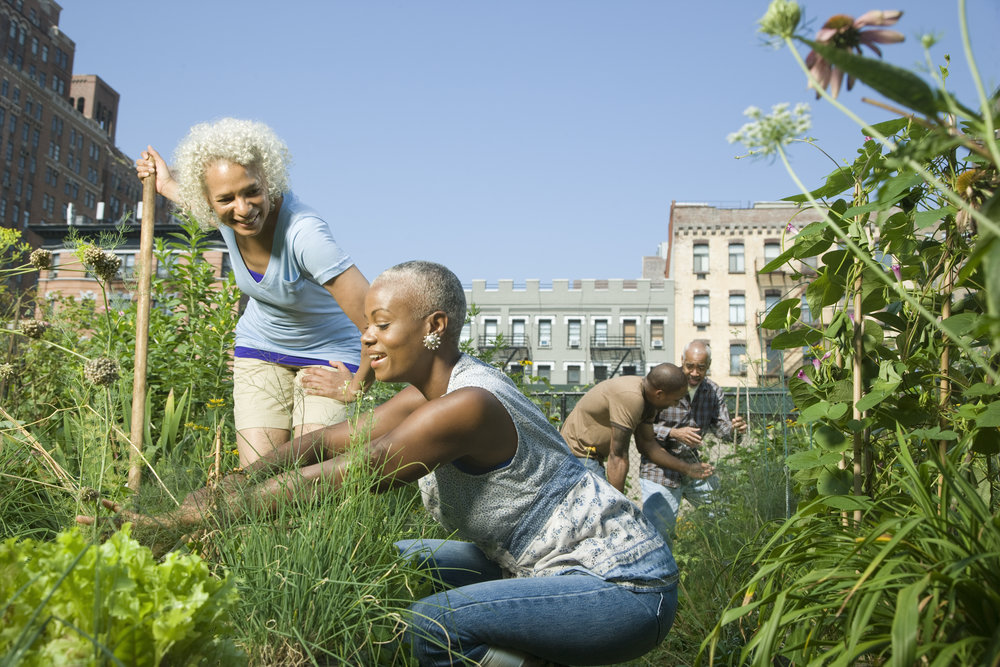 giving community organizers the capital to thrive