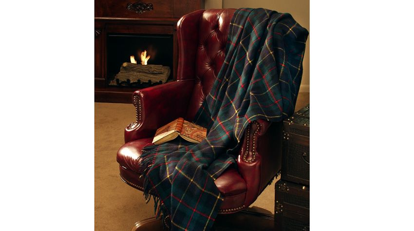 Medium_1152009123248AM_Leather Chair and blanket.jpg