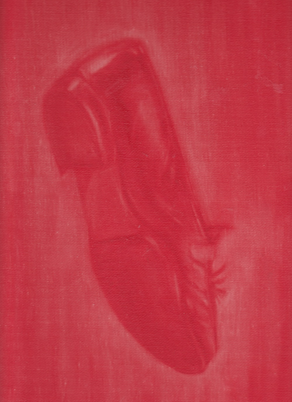Akai Kutsu (The Red Shoe), 2015. Oil on Canvas.