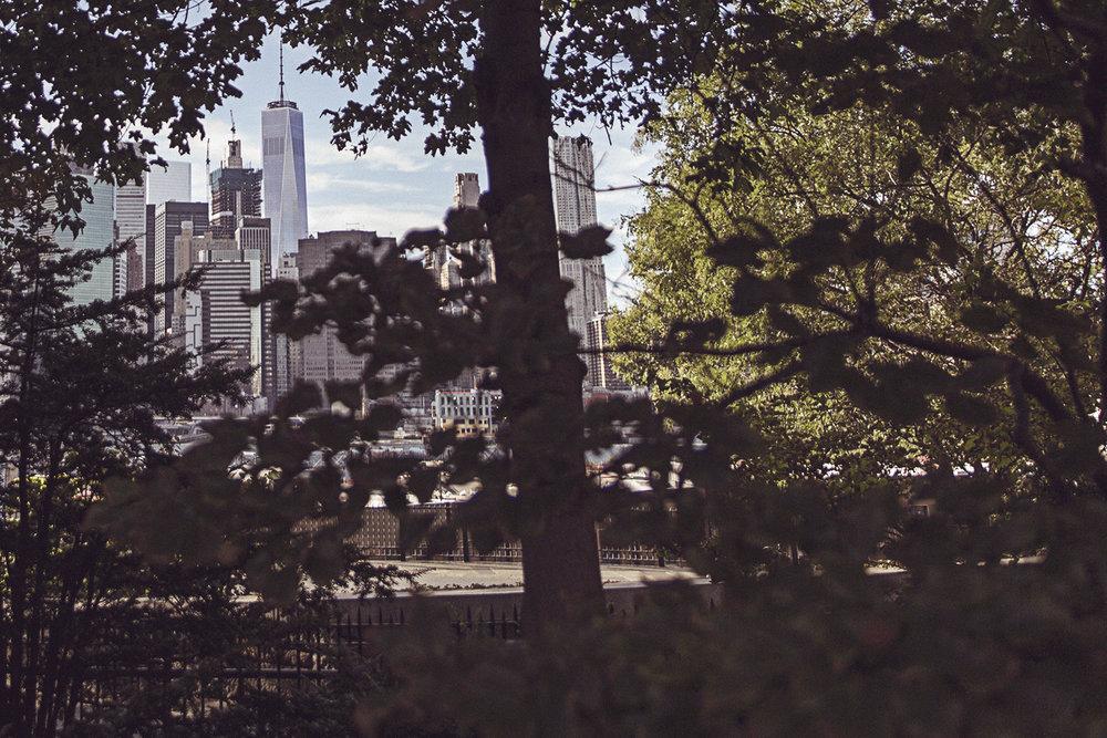 2016-09-09_New_York_131.jpg