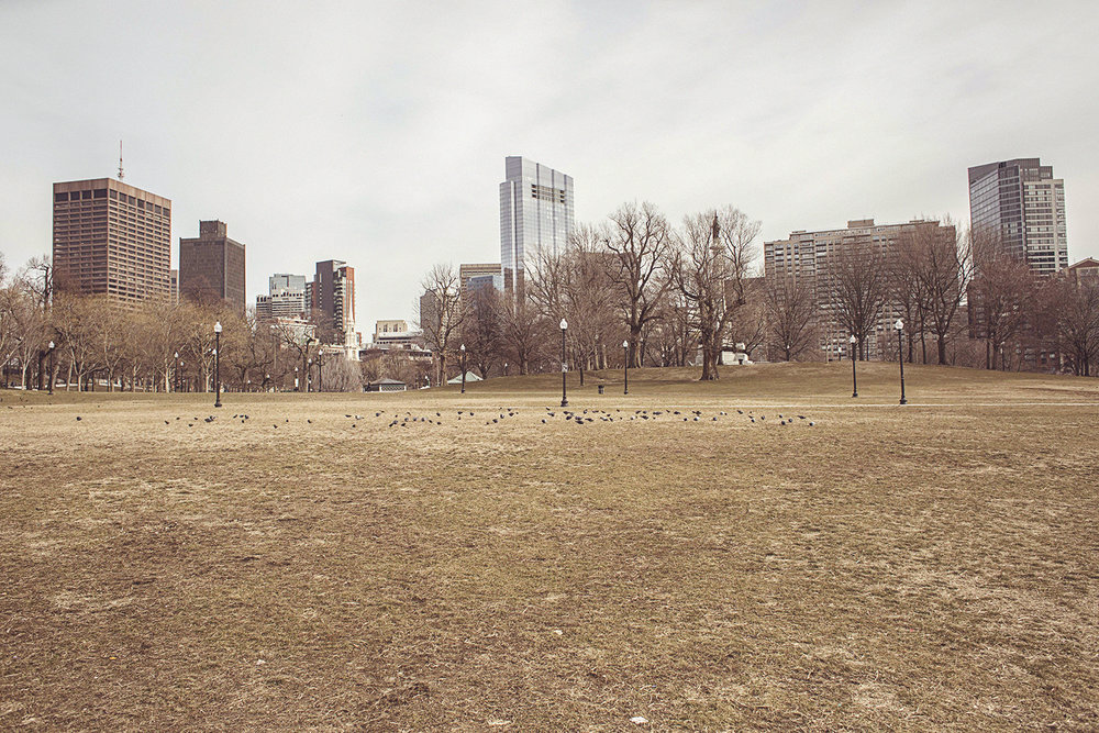 2017-02-02_Boston_001.jpg