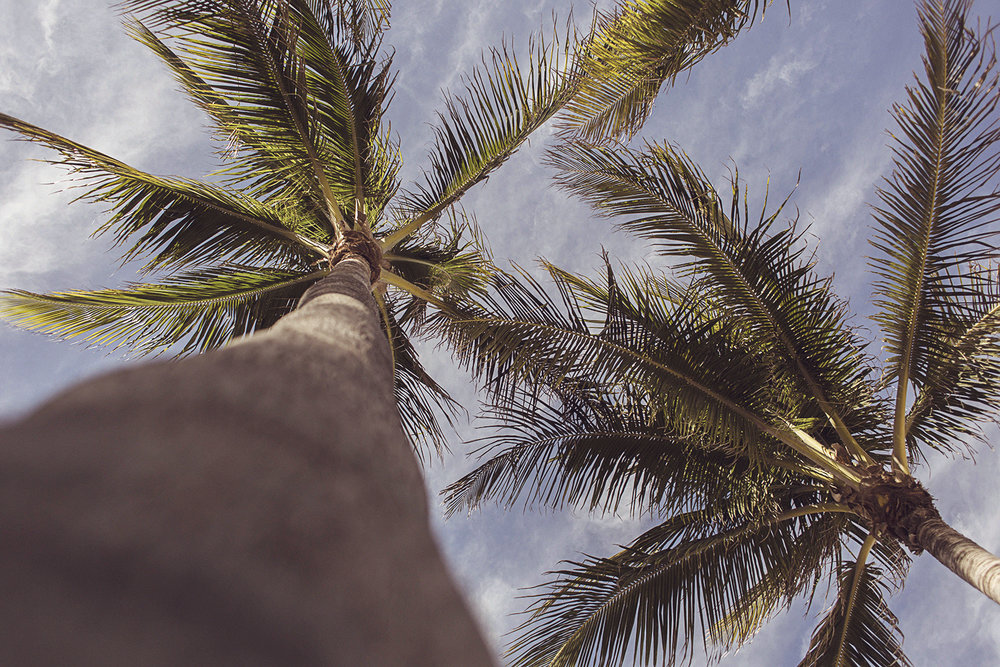 2017-03-08_Miami_Beach_028.jpg