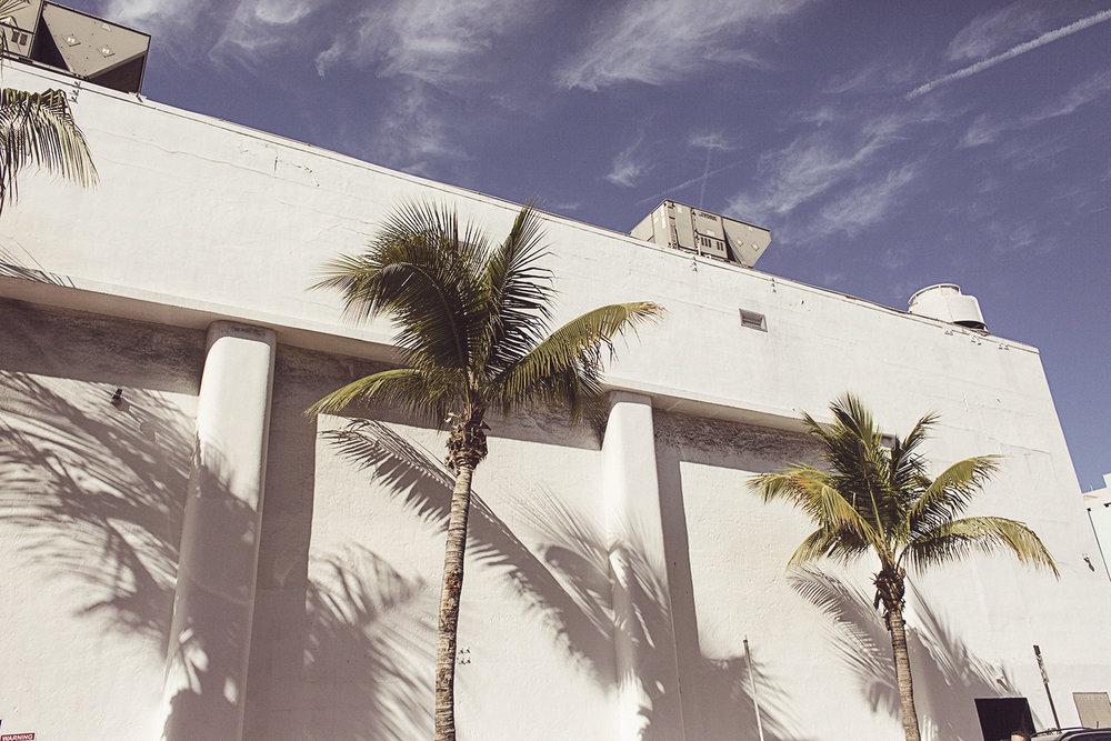 2017-03-08_Miami_Beach_455.jpg