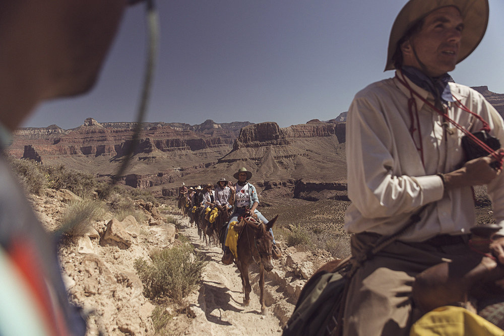 2017-06-04_Grand_Canyon_227.jpg