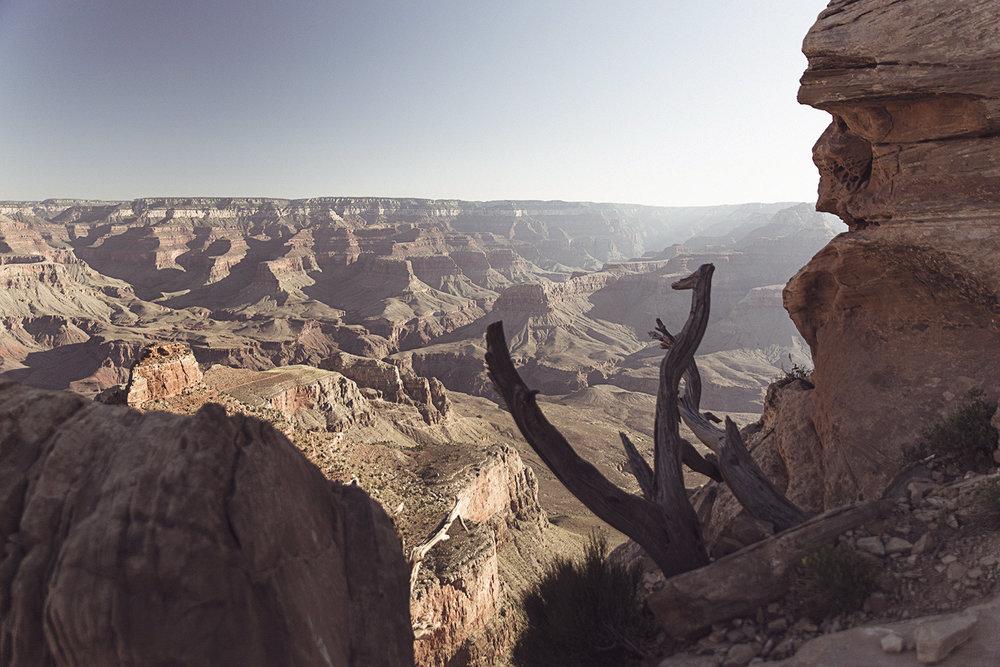 2017-06-04_Grand_Canyon_180.jpg