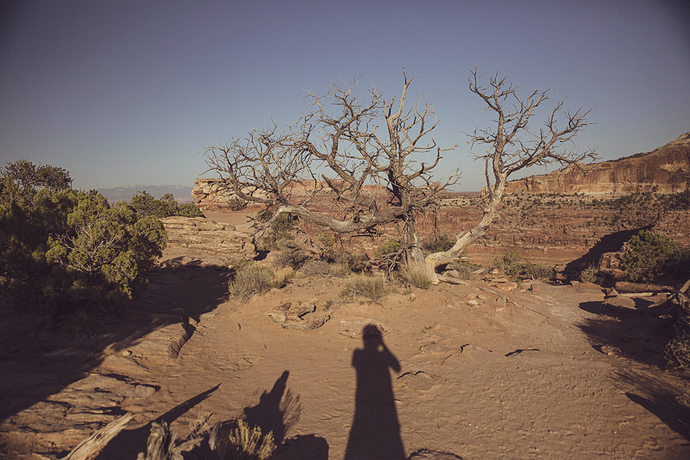 2017-06-09_Canyonlands_003.jpg