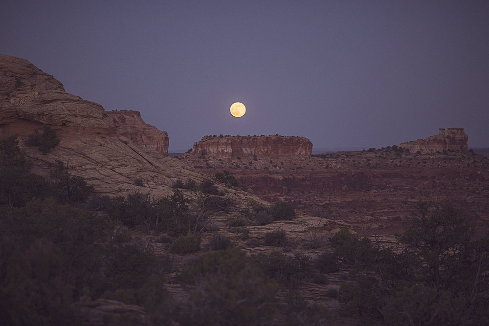 2017-06-09_Canyonlands_100.jpg
