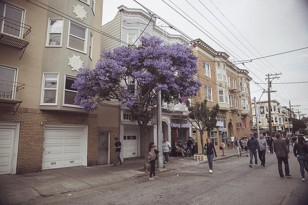 2017-06-23_San_Francisco_262.jpg