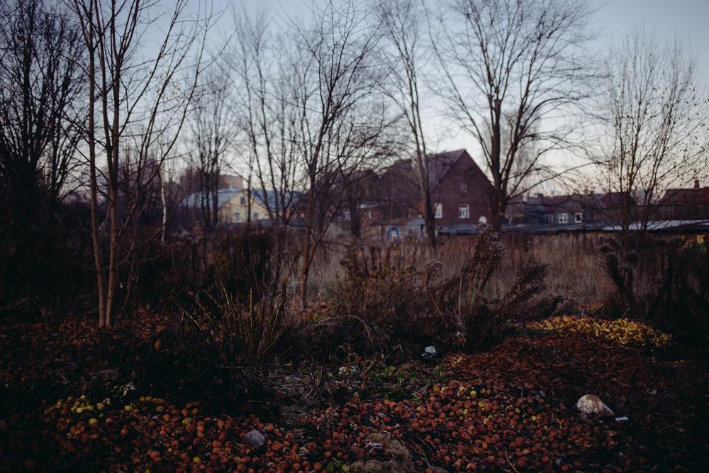 Tartu, Estonia. November 2014.